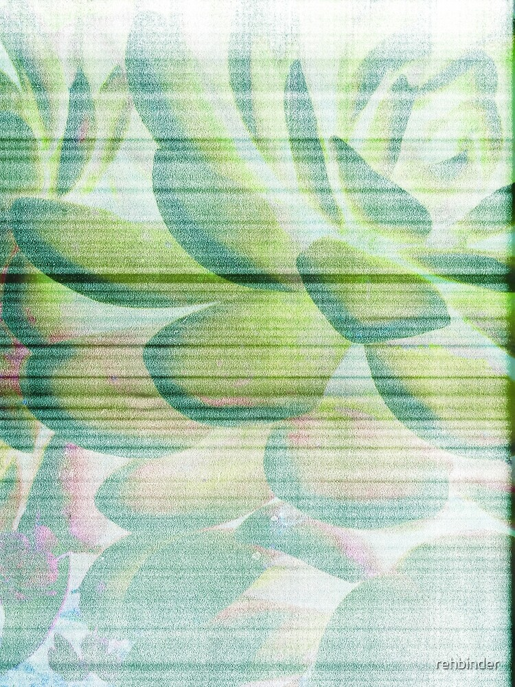 Botanical Abstract 1 by rehbinder