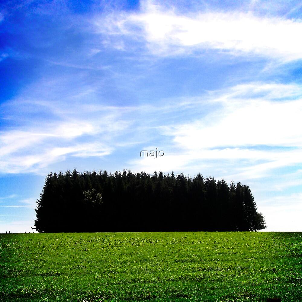 tree-express by majo