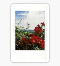 Flower Photo Sticker