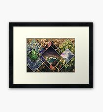 nature in the face of evolution Framed Print