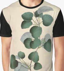 Illustrations of medical botany 1847 V1 Joseph Carson 007 Cissampelos Pareira Graphic T-Shirt