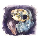 Skulls and Gems by Rebekie Bennington