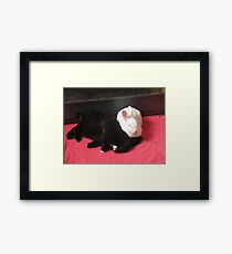 Comfortable partnership Framed Print