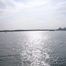 View from Southampton Docks by Hides