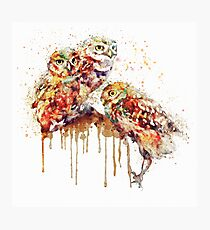 Three Cute Owls watercolor Photographic Print