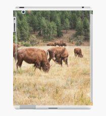 Bison Grazing iPad Case/Skin