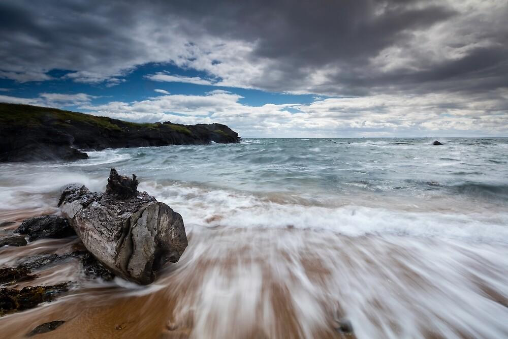 Driftwood - Elie Beach by Stuart Marshall