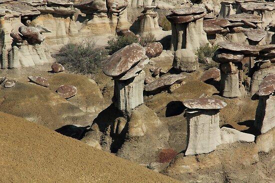 USA New Mexico Ah-Shi-Sle-Pah by eickys
