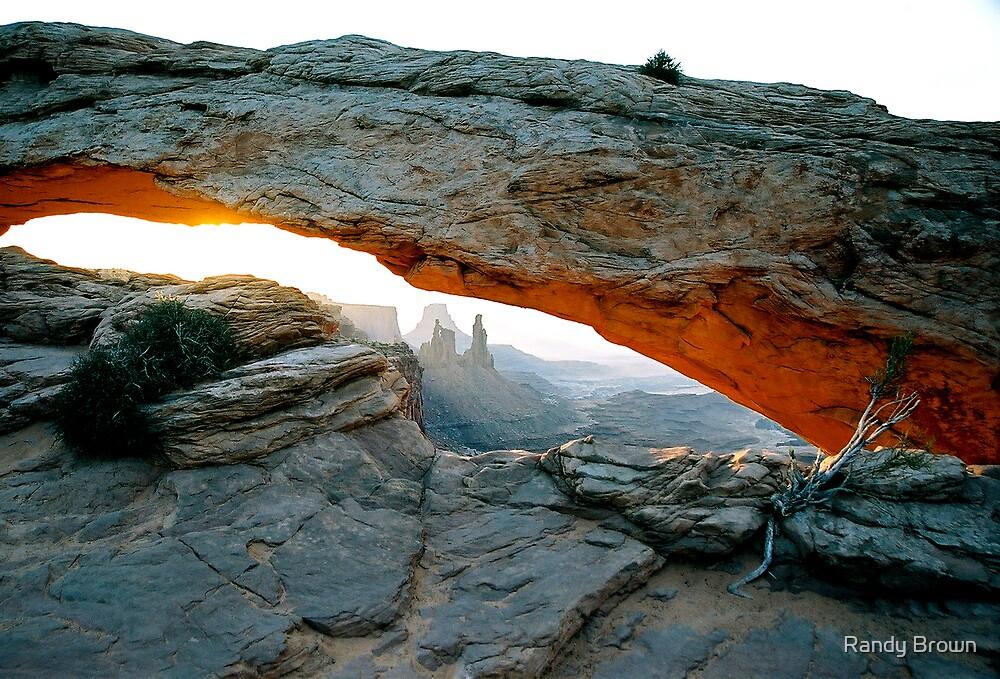 Mesa Arch by Randy Brown