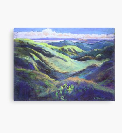 View from the Rooftop St Bernards Tamborine In Pastel  Canvas Print