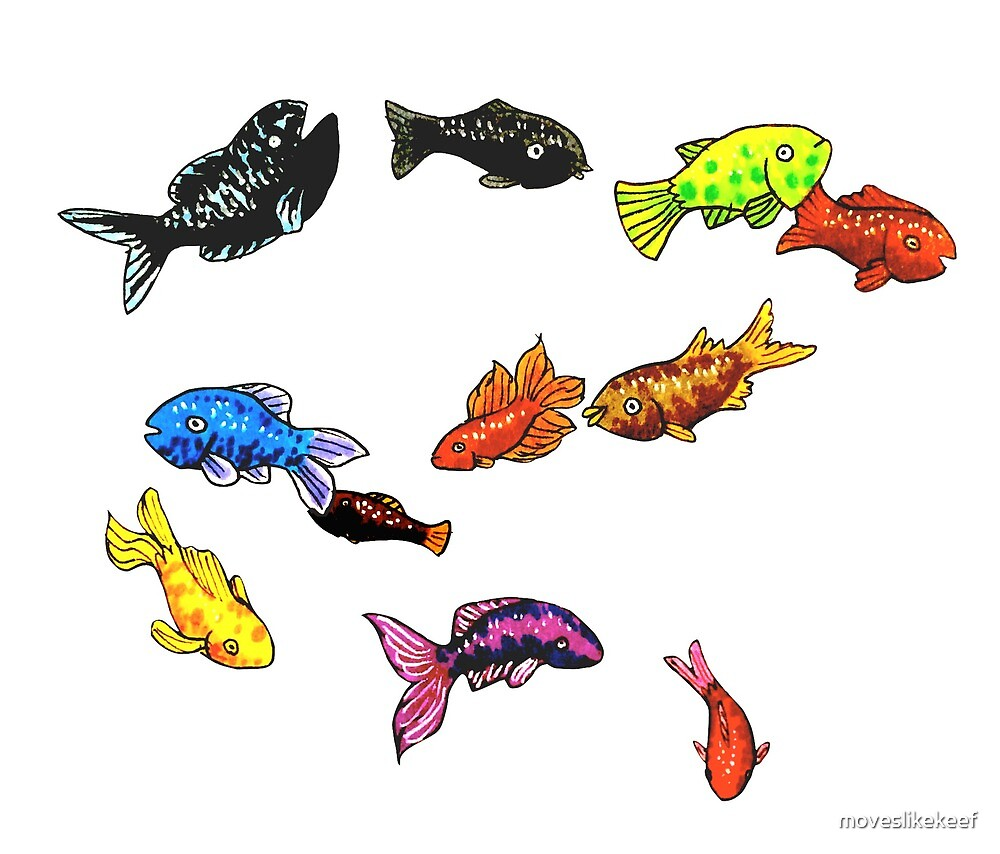 Grouplove - Colours Fish by moveslikekeef