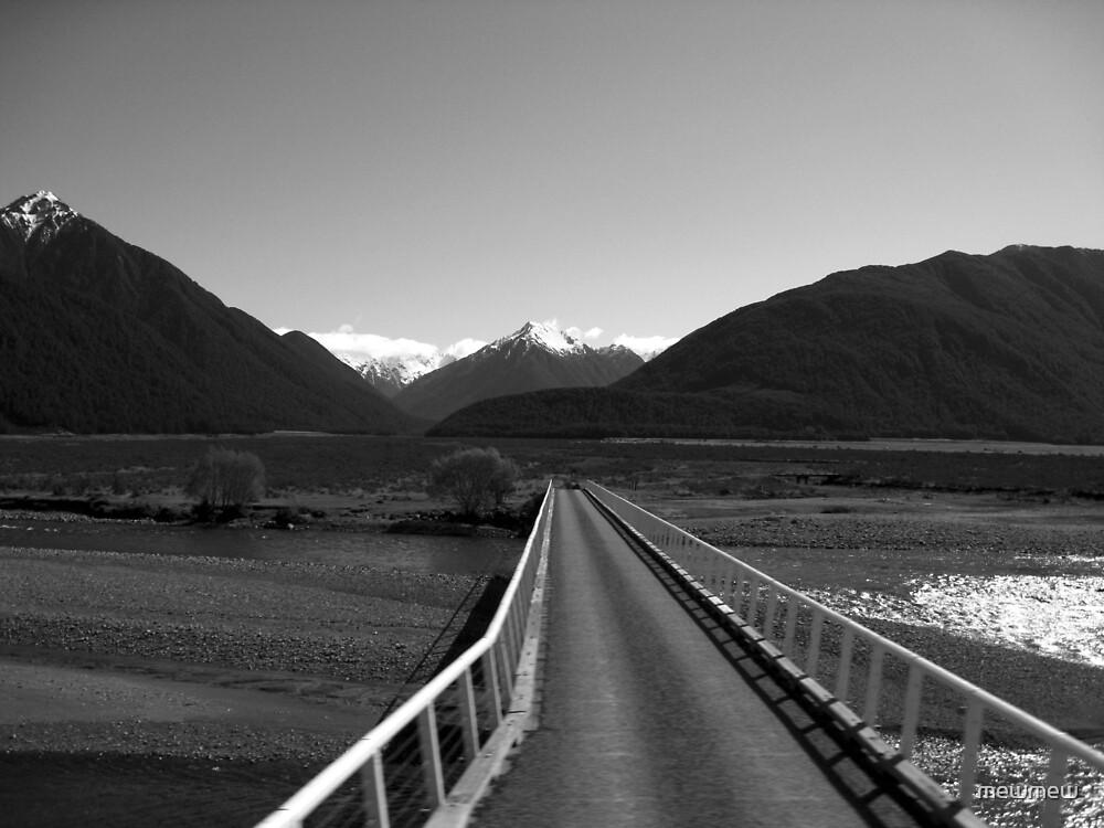 Trans Alpine Rail, New Zealand by mewmew