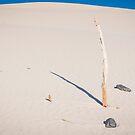 desert  by milena boeva