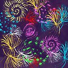 Fireworks by Liz Plummer