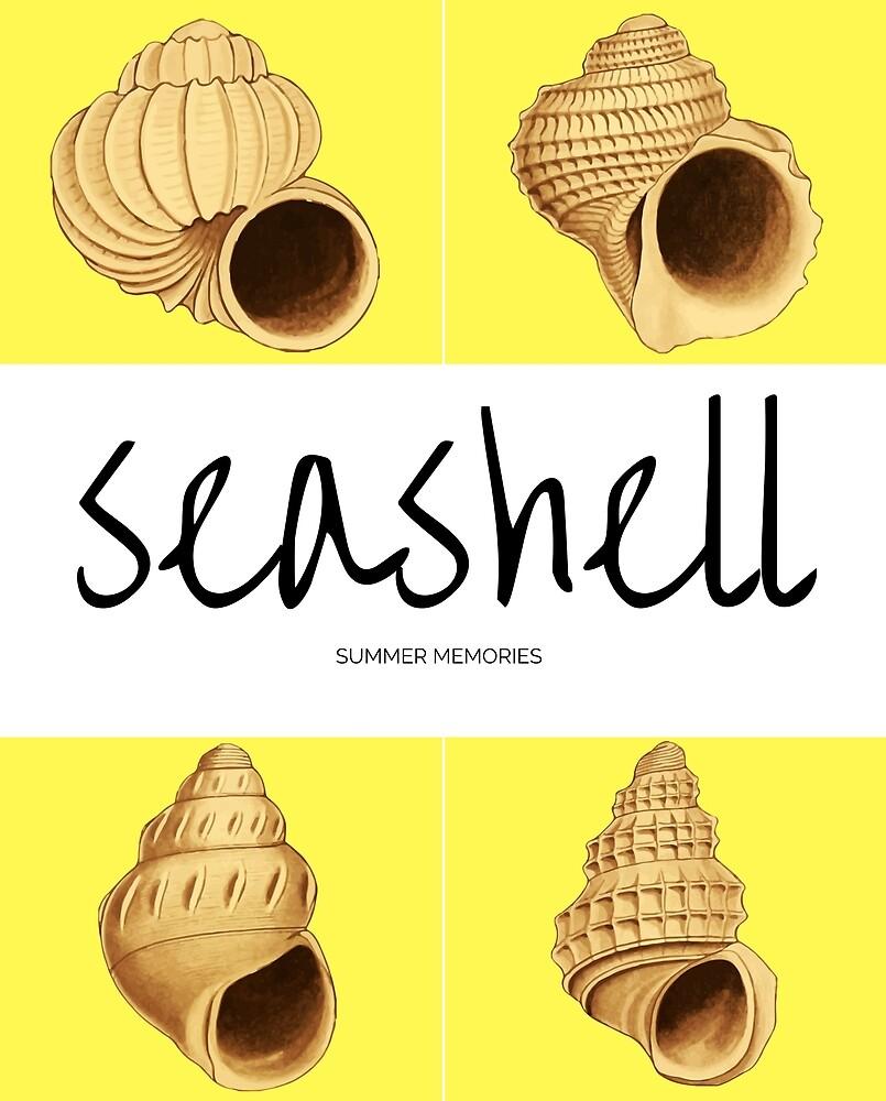 Seashell by zionocean