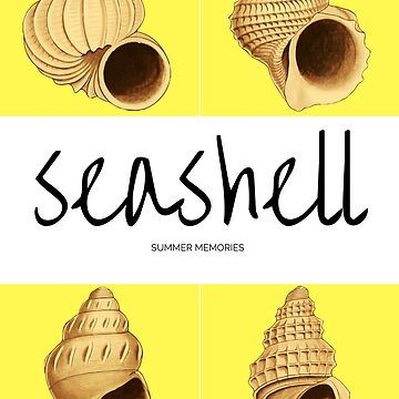 Seashell by zionocean