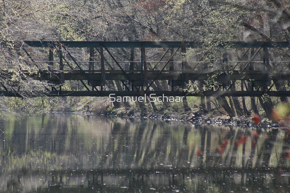 bridges of Mercer County by Samuel Schaar