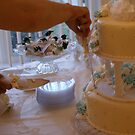 Cutting The cake by candid