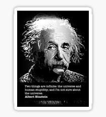 Albert Einstein - Human Stupidity Sticker