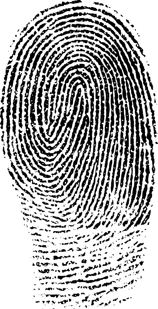 Finger Zebra Print by pereirashop
