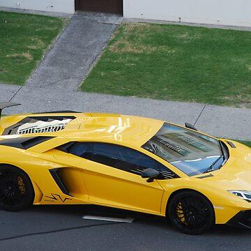 Lamborghini Aventador SV  by lizdomett