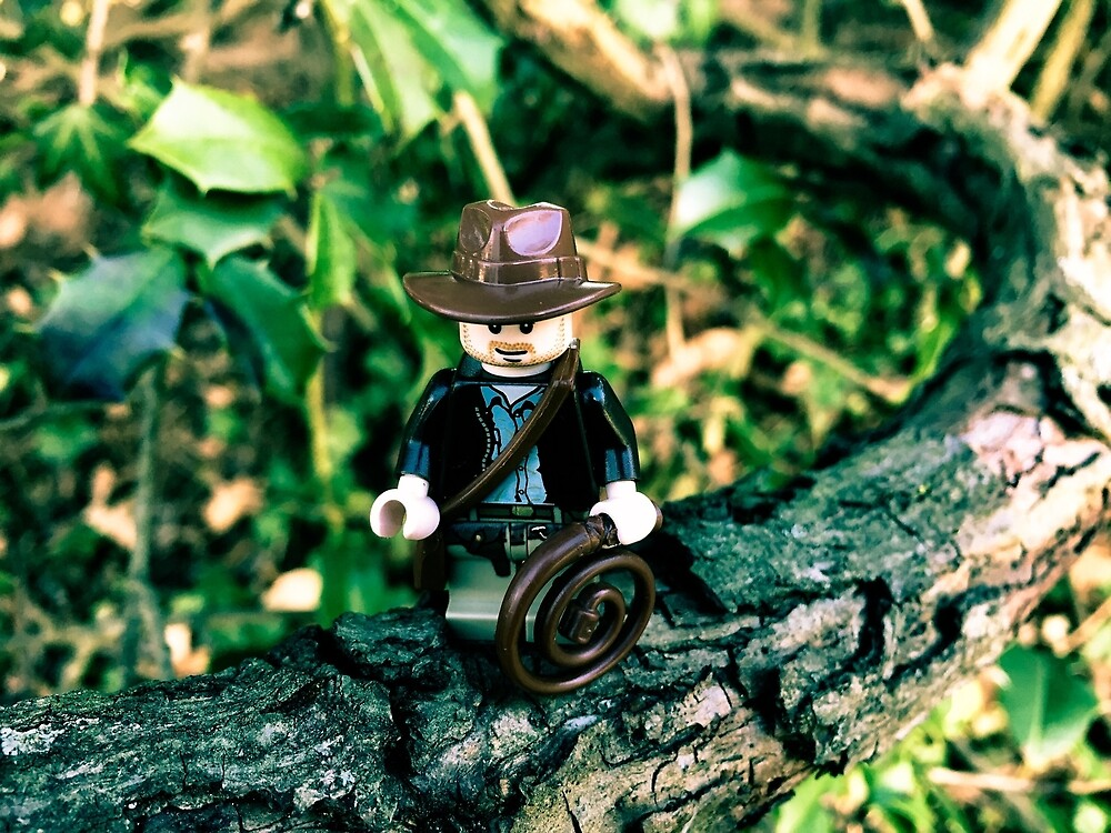Brickography Pictures - Adventure by Phantomdrummer