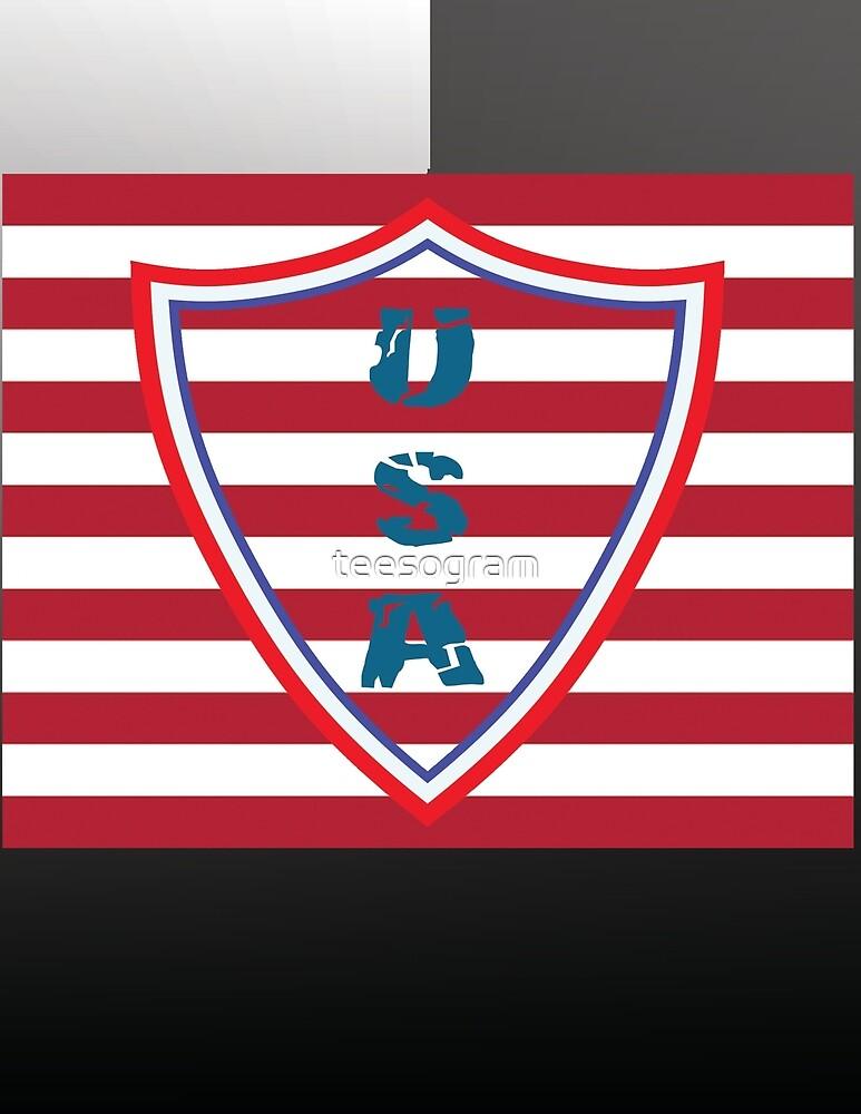 USA flag - patriotic series, 4 by teesogram