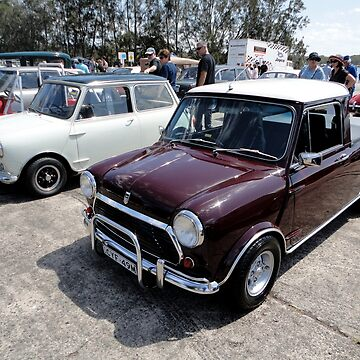 Mini Ute,Catalina Festival,Rathmines,Australia,2015 by muz2142