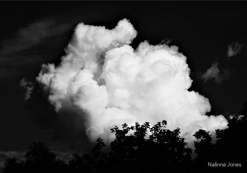 Black and White Storm Cloud by Nalinne Jones