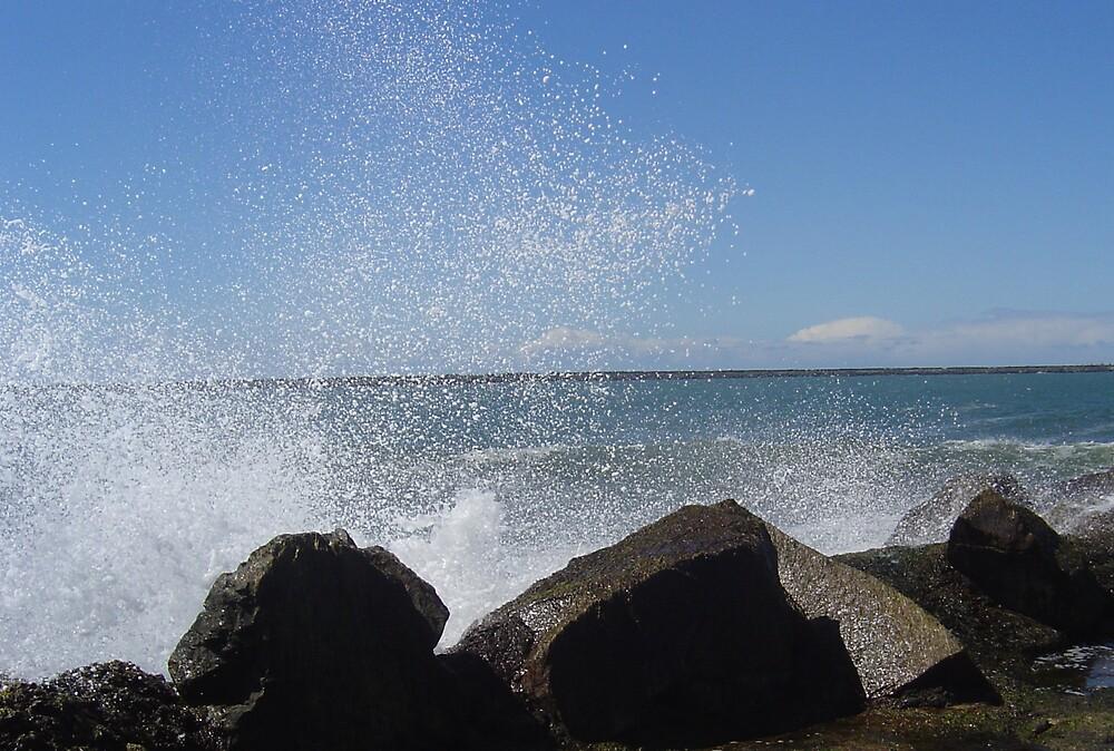 Splash !! by Jerry Stewart