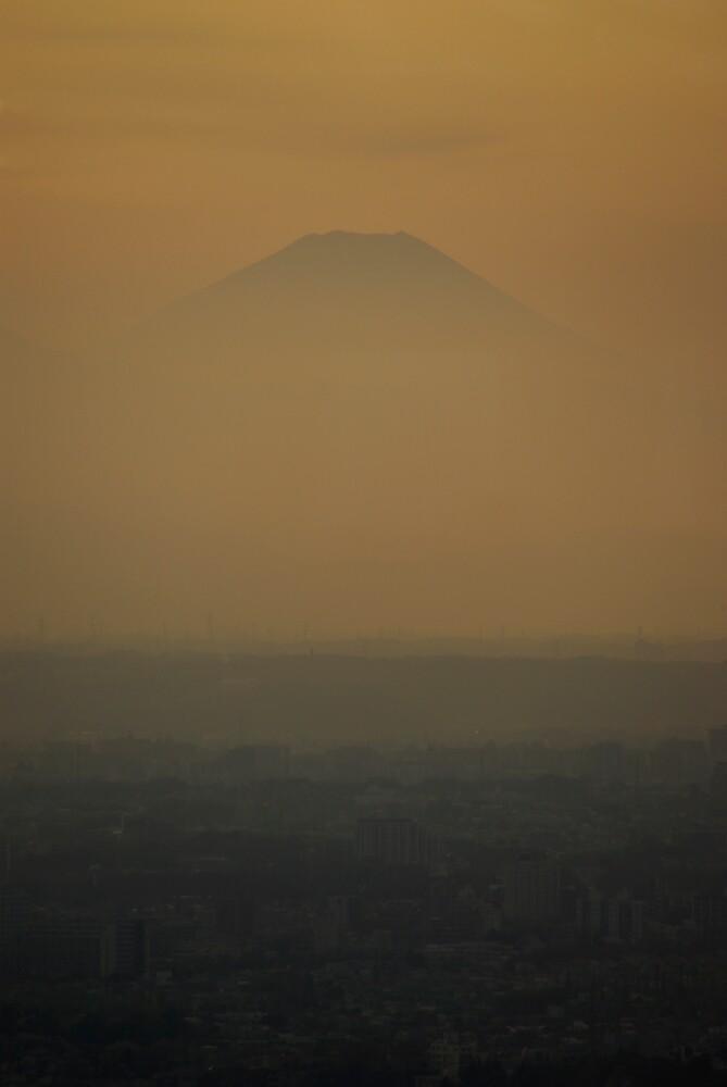 Fuji in the Distance by Matt  Streatfeild