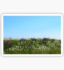 Lavender & Daisies Sticker