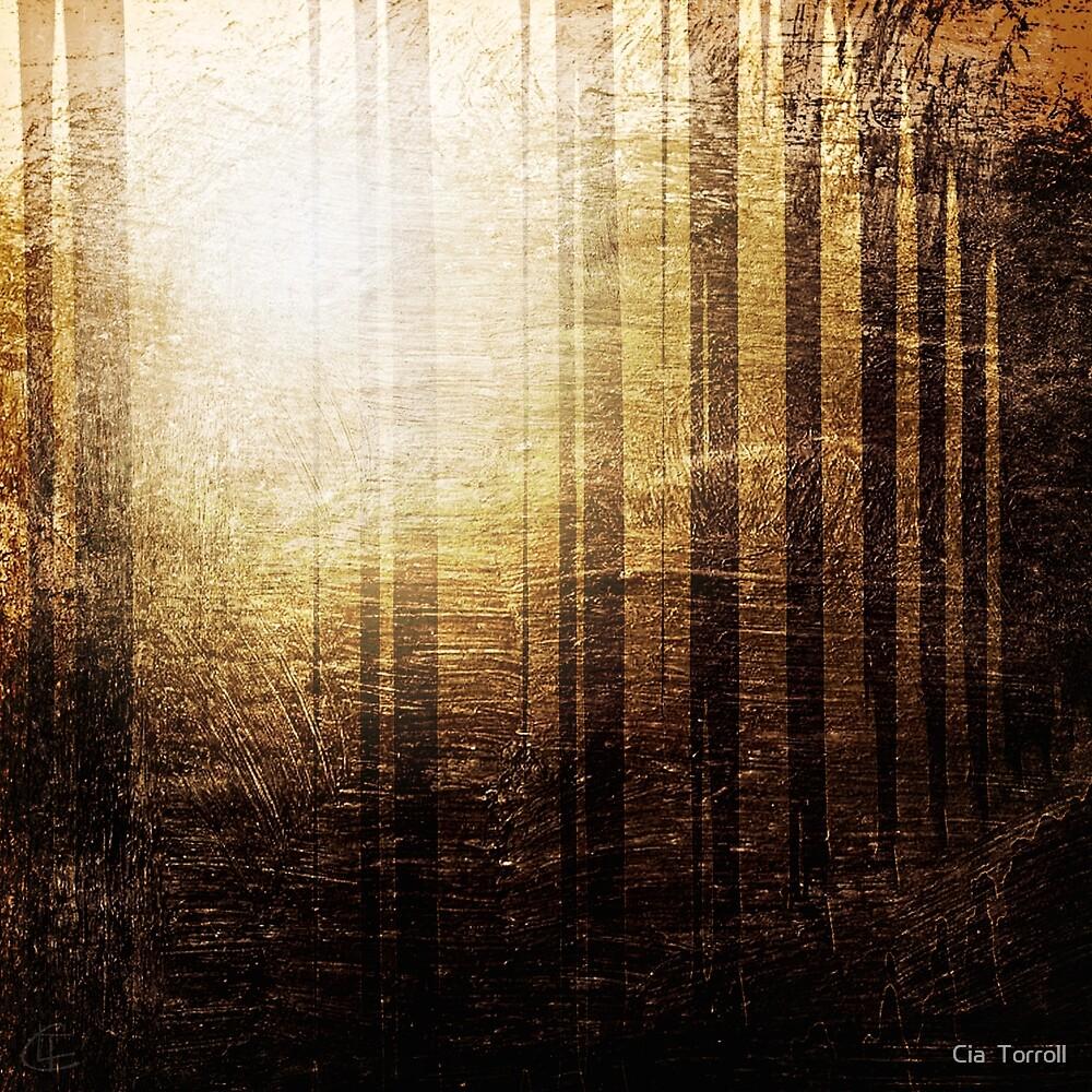The sap rises. by Cia  Torroll