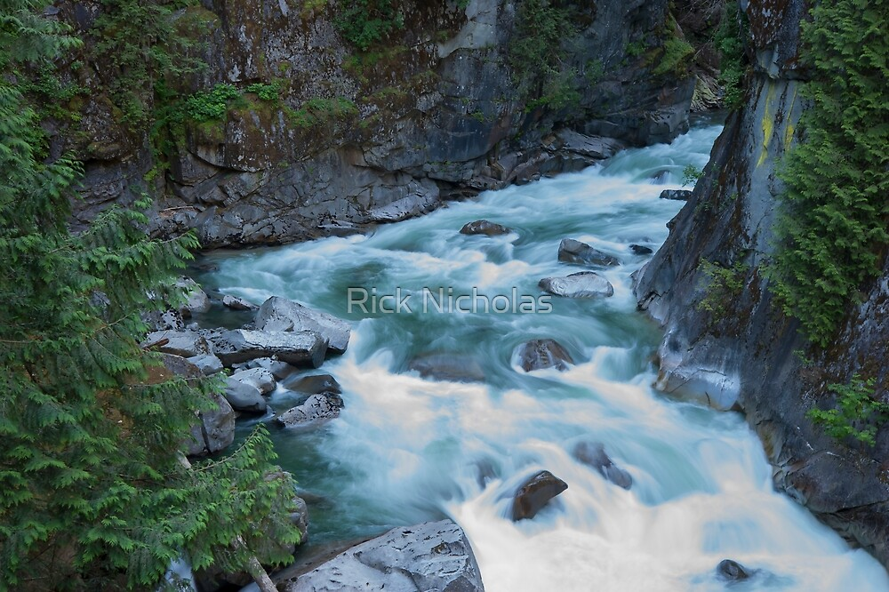 The Mighty Coquihalla River by Rick Nicholas