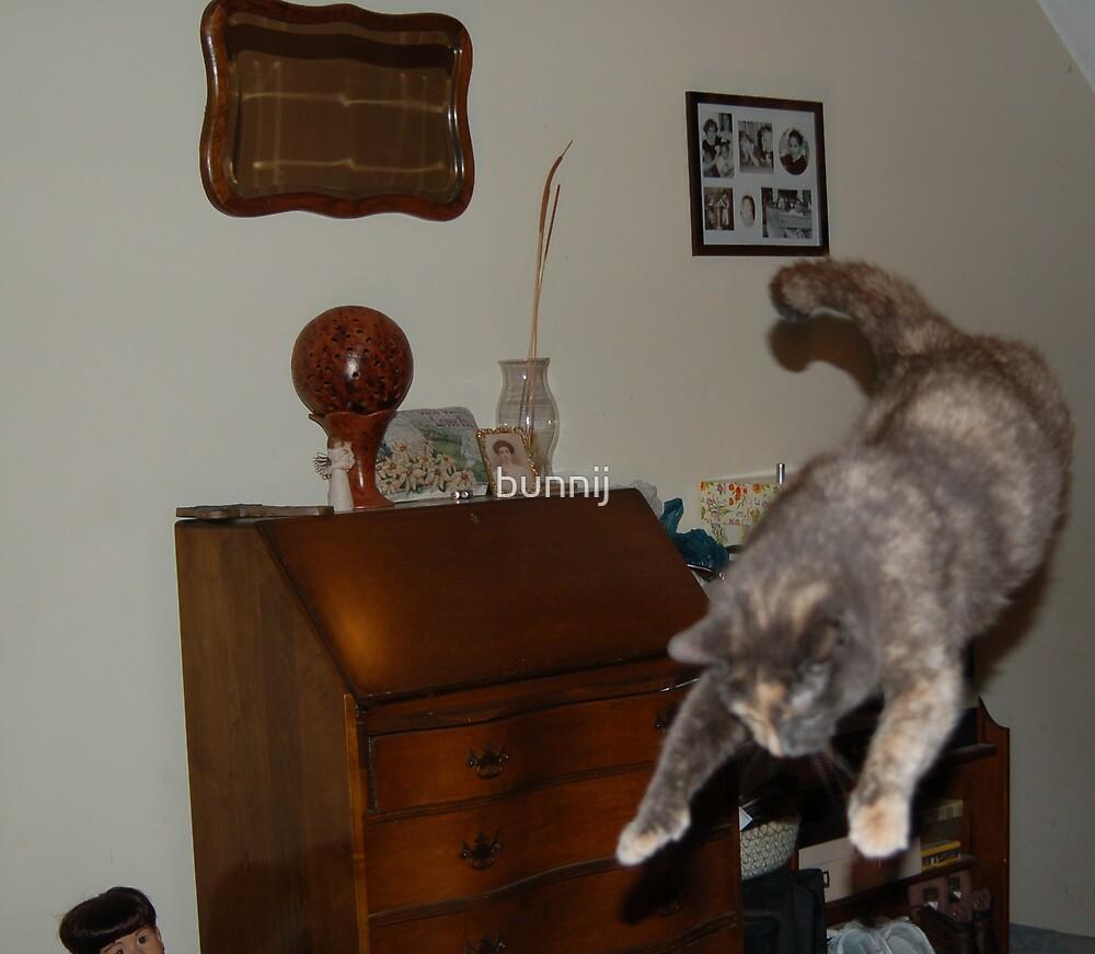 Cat in Flight! by bunnij