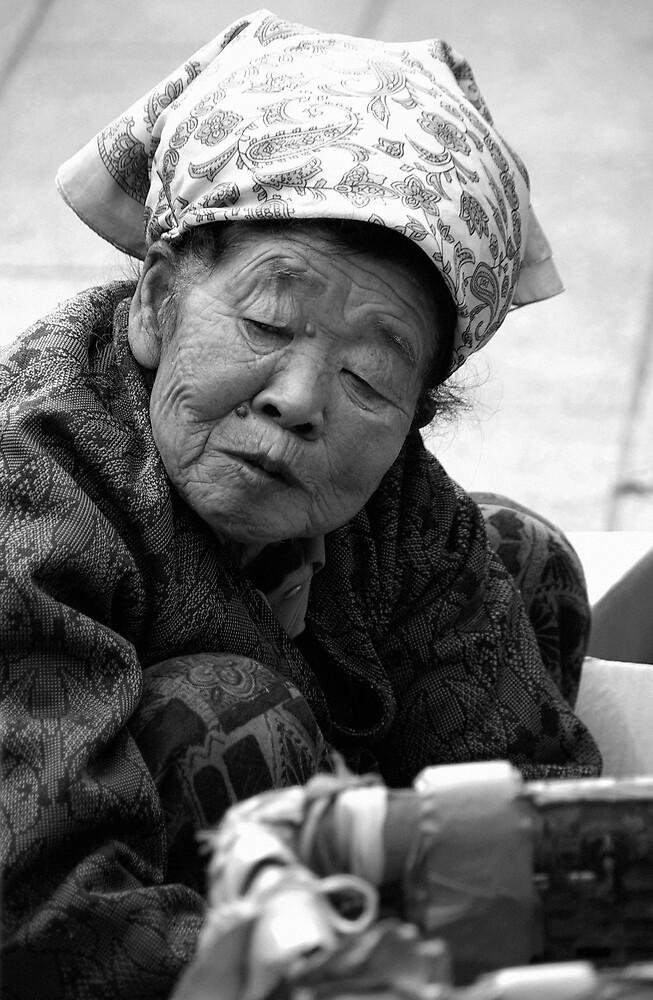 The Market Lady by Matt  Streatfeild