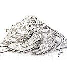Sydney octopus ink drawing - Octopus tetricus by John Turnbull