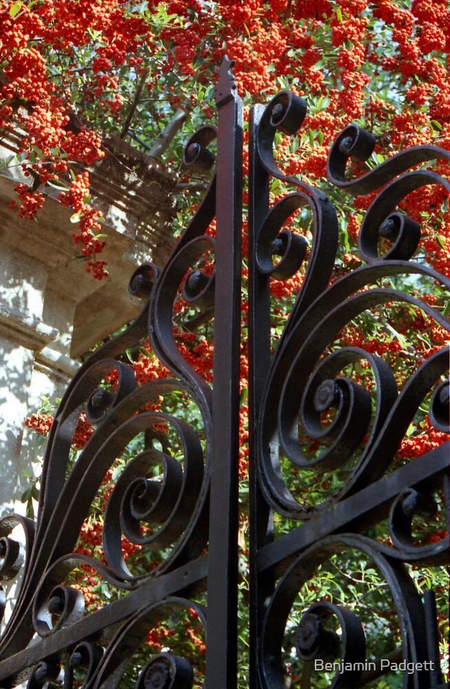 Charleston Gate & Flora by Benjamin Padgett
