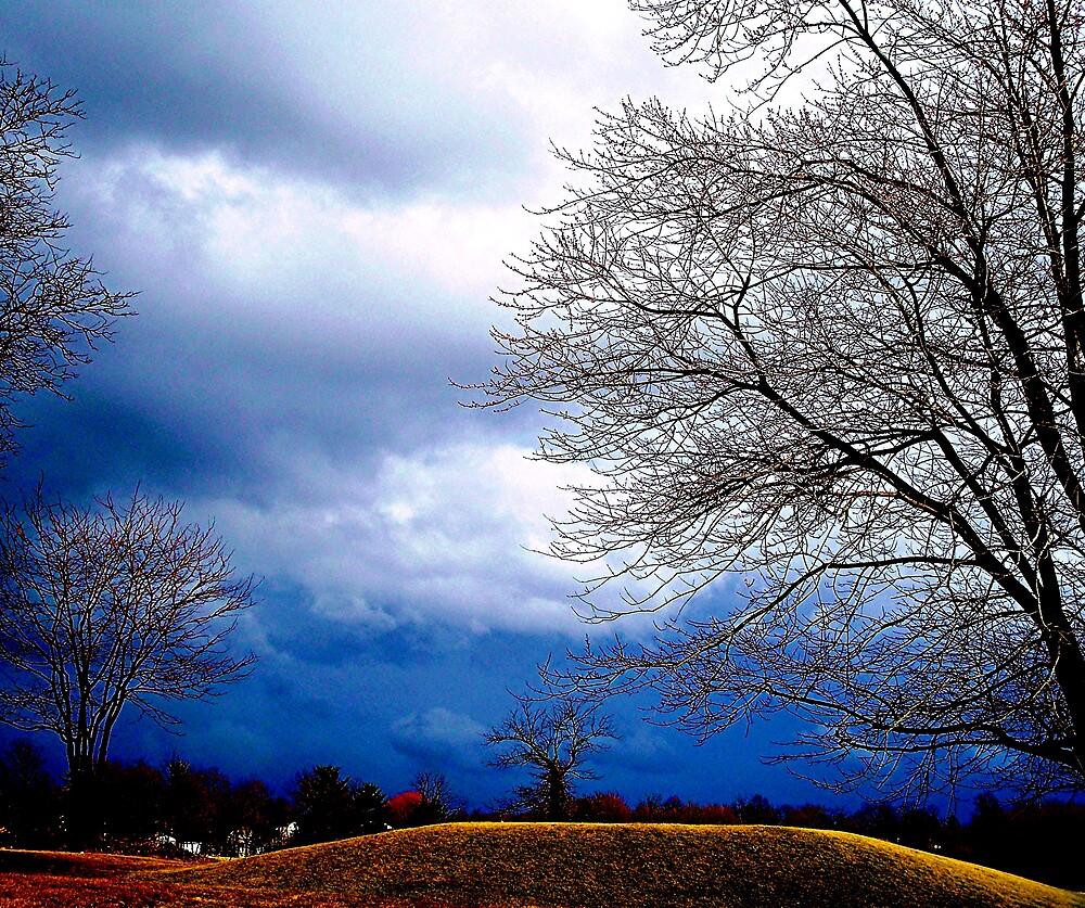 Blue sky over the mound by Judi Taylor