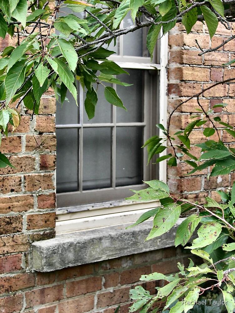 Secret Window by Rachael Taylor