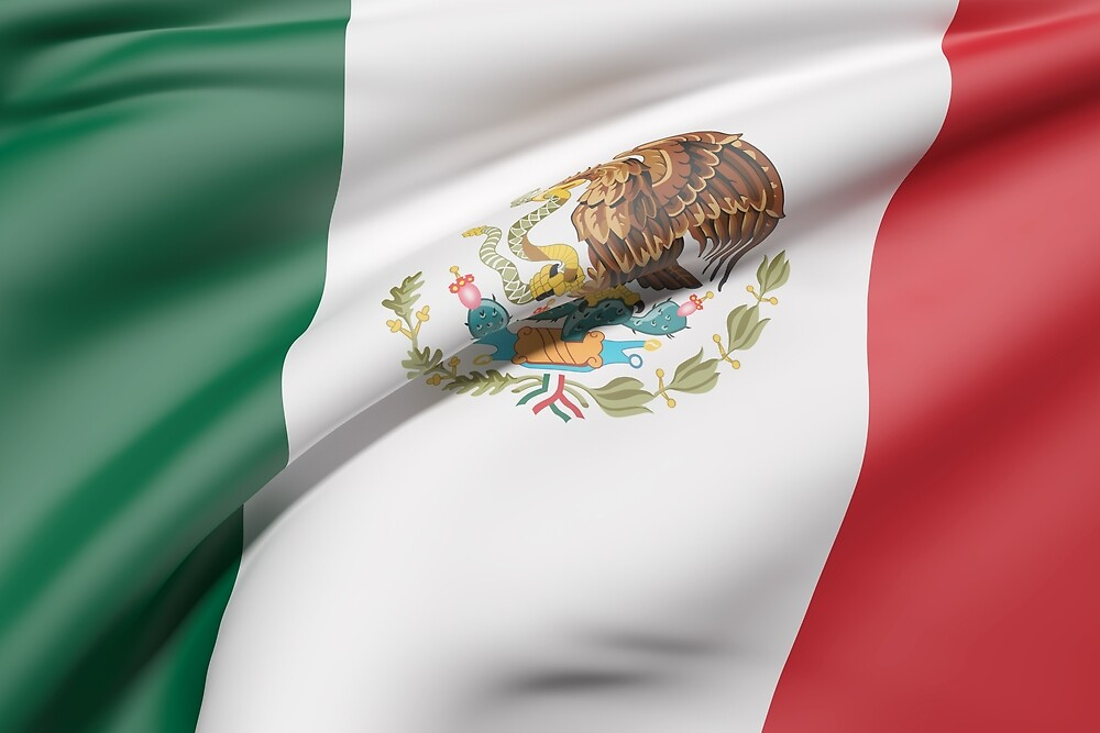 Mexico flag by erllre74