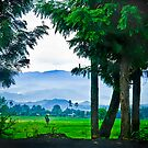 Did I also mention Rwanda is beautiful? by Melinda Kerr