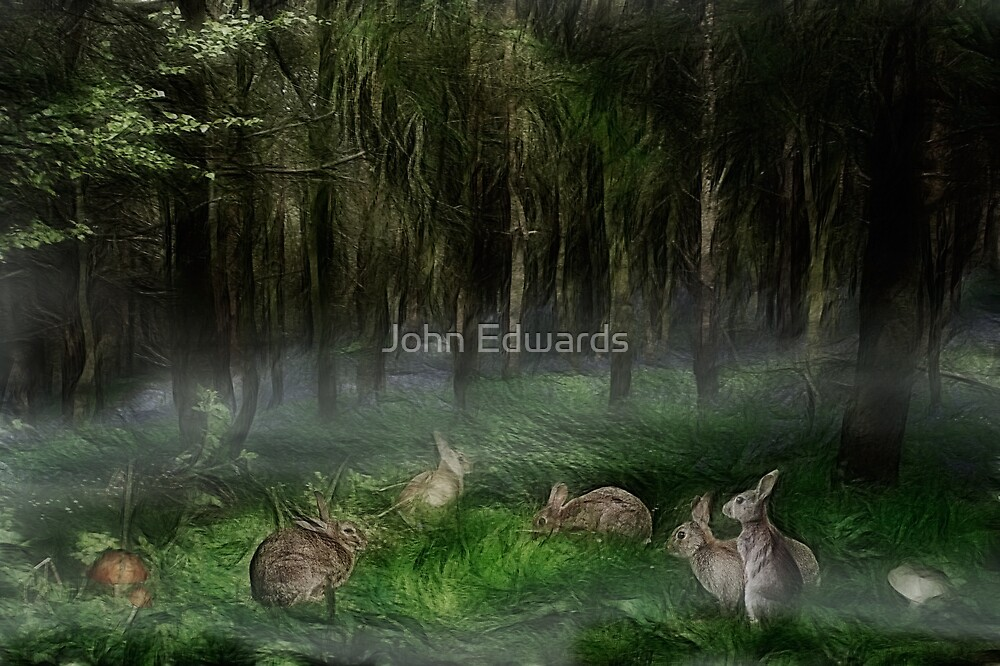 Circle of friends by John Edwards