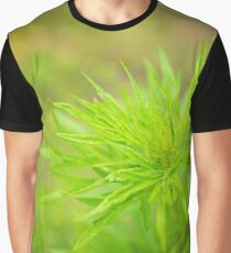 Summer Sagebrush Graphic T-Shirt