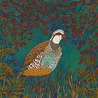 Partridge in the Hedgerow by lottibrown