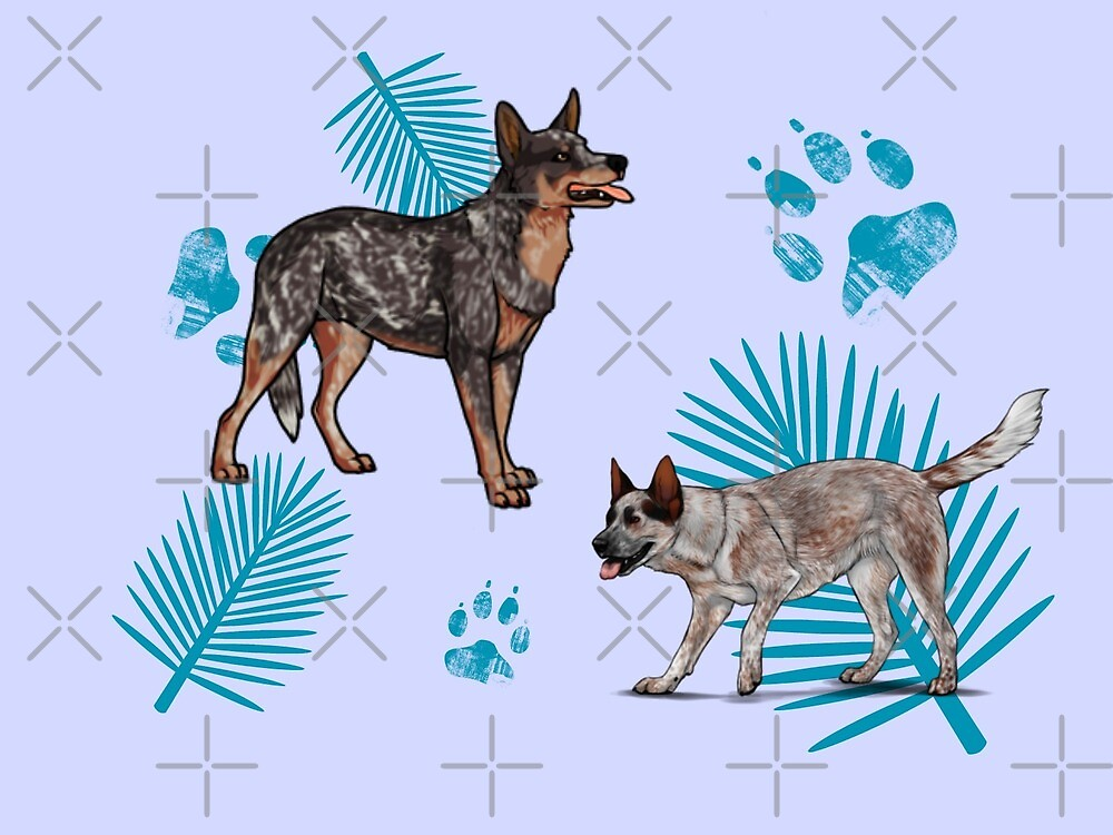 Cattle Dog by mclaurin612