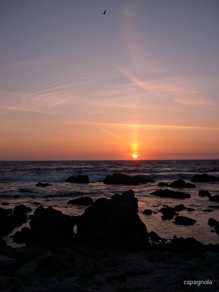 Sunset by cspagnola
