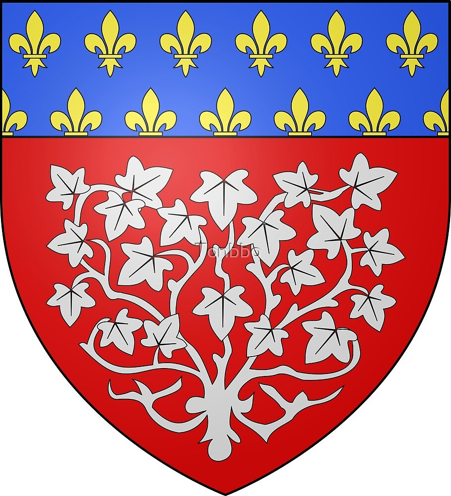 Amiens coat of arms, France by Tonbbo