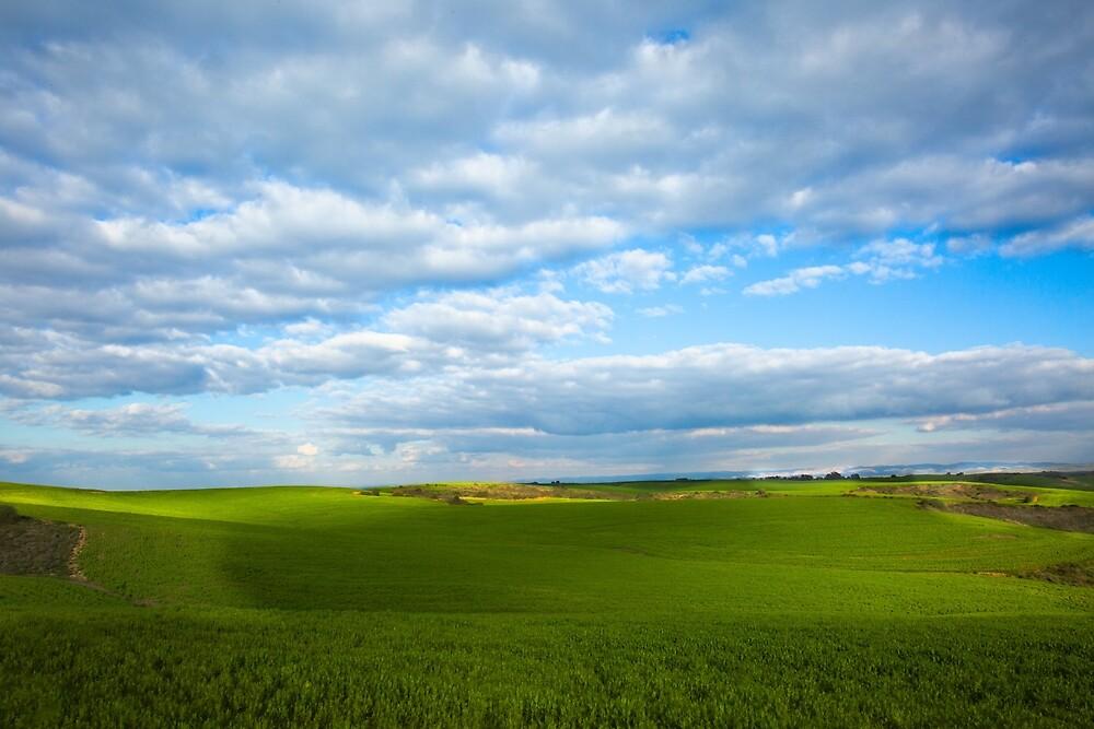 Open field  with blue sky by Layuee