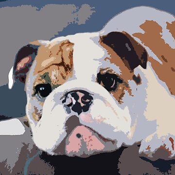 Cute Bulldog by TheAnonOne